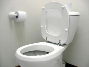 toilet installed in Toronto bathroom