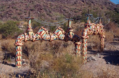 backflow prevention device in the desert