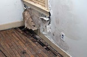 water damage caused by failed kitec plumbing