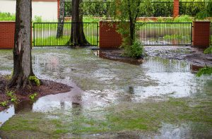 flooded landscaping in the yard of a Mississauga home