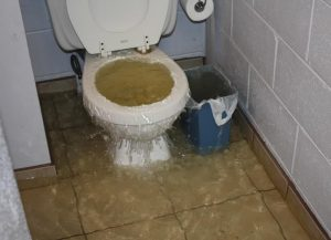 a toilet is visible inside the bathroom of a toronto home, water is pouring out of the top as it overflows