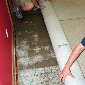 flood water got below this carpet which is being removed by water restoration workers to prevent mold