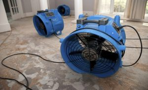 fans sit on the floor in a wet basement and aid in the evaporation of flood water